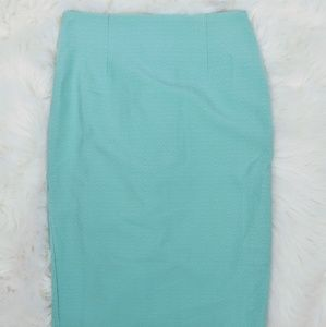 Tobi Mint Green Stretch Knit Midrise Pencil Skirt